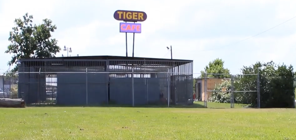 Tony's cage, with a sign advertising: TIGER, CAFE.