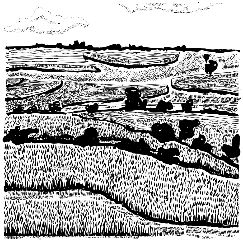 An illustration of Ohio fields and woods.