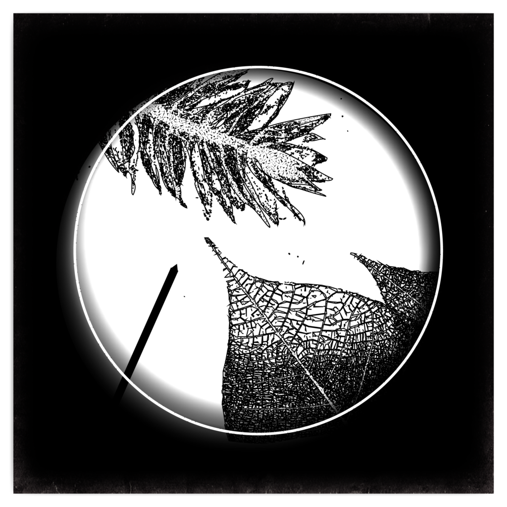 An illustration of leaves observed under a microscope.