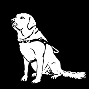 A black and white sketch of a white dog against a black background, wearing a service dog harness, and sitting.